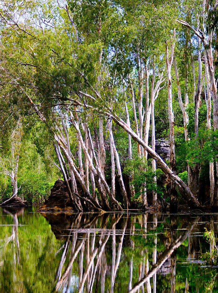 East Alligator River, Kakadu-Nationalpark, Australien (Bild: Djambalawa, Wikimedia, CC)