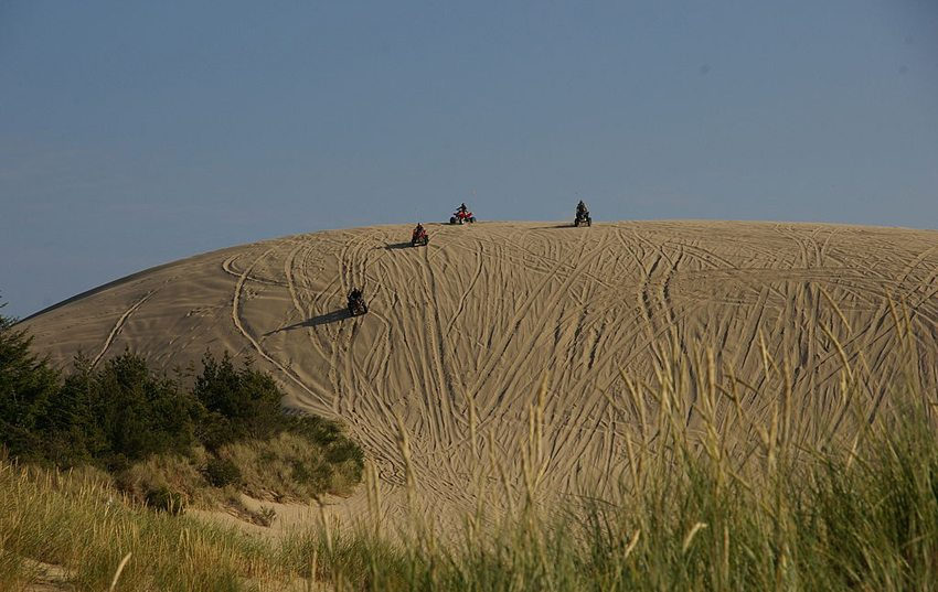 Oregon Dunes National Recreation Area (Bild: Scott Catron, Wikimedia, CC) USA Reise