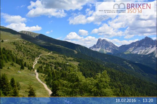 Plose - Woody Walk (Bild: © Dolomiti SuperSummer)